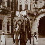 A Bejewelled Elephant in the  Laxmi Vilas Domain